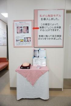 乳がん触診モデル1-2